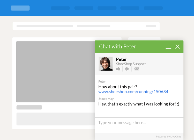 LiveChat window